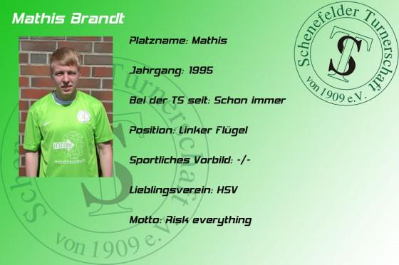 Mathis-Brandt