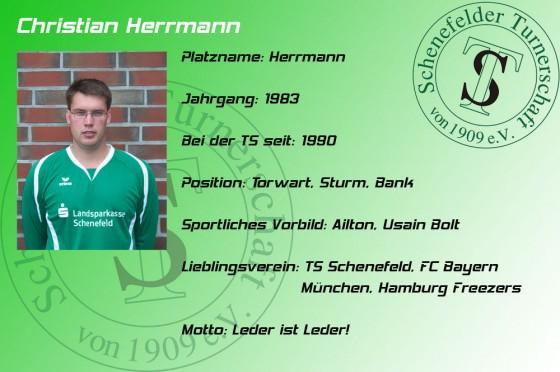 Steckbrief-Christian-Herrmann