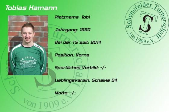 Steckbrief-Tobias-Hamann